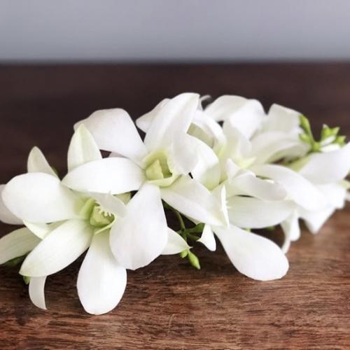 Grinalda com arranjo natural de orquídeas