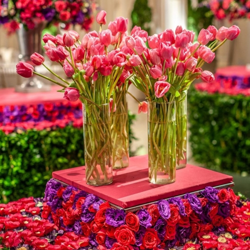 Arranjos de flores - Tulipas