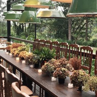 Mesa de Convidados com Plantas