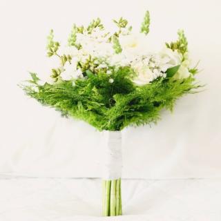 Buque branco e verde