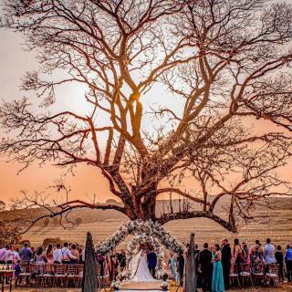 Cerimônia de casamento ao ar livre Beatris de Michelli