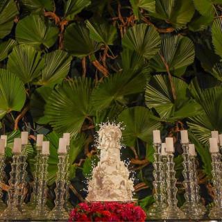 Mesa de bolo com Palmeira Leque