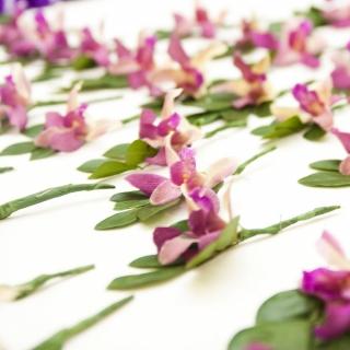 Lapela orquídea